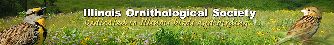 Illinois Ornithological Society